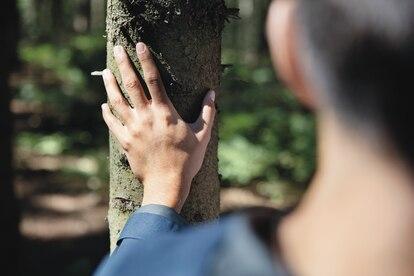 Todos los envases de cartón de la compañía ya se fabrican con papel procedente de bosques gestionados de forma responsable, certificado con el sello FSC®.