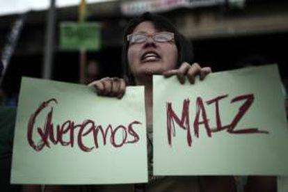 Un grupo de activistas se manifiesta en San José en contra de una autorización gubernamental para la siembra de maíz transgénico a una firma filial de la trasnacional Monsanto. EFE/Archivo