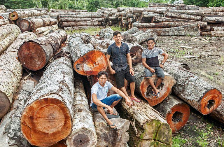 Rosilei Barbosa Pimentel (centro), junto a dos compañeros en una de las explotaciones situadas en Verde Para Sempre.