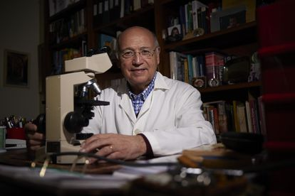 The professor of Biochemistry and Molecular Biology at the University of Granada Ángel Gil, in his office during the interview.