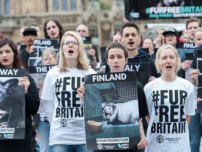 Grupos animalistas se manifiestan frente al Parlamento británico para protestar por la importación de pieles, el pasado junio.