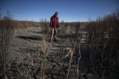 Romualdo Calahorra, operador de maquinaria del parque, observa la sequedad del terreno en una de las zonas centrales del humedal.