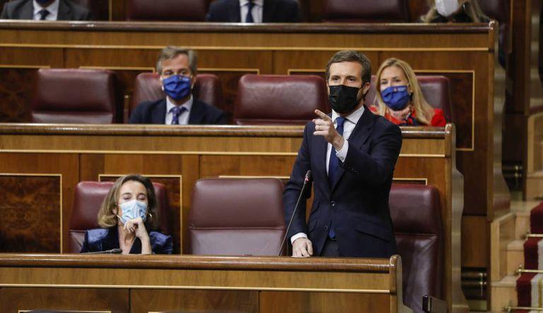El presidente del PP, Pablo Casado, en el Congreso de los Diputados.