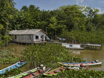 Marajó, isla situada en la desembocadura del Amazonas, en Brasil.