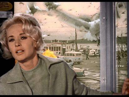 """Fotograma de la película """" Los pájaros"""" , de Alfred Hitchcock."""