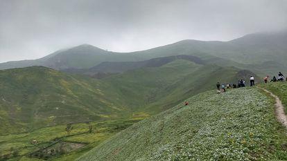 Las lomas del valle de Lurín, en Perú, sirven de lugar de recreación para numerosas personas. Se sube a ellas a pie, para disfrutar el paisaje verde creado temporalmente por la humedad.
