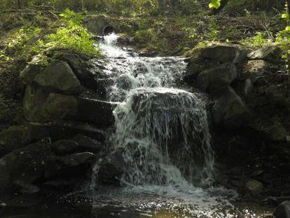 Río Barbaña, a su paso por San Cibrao das Viñas.