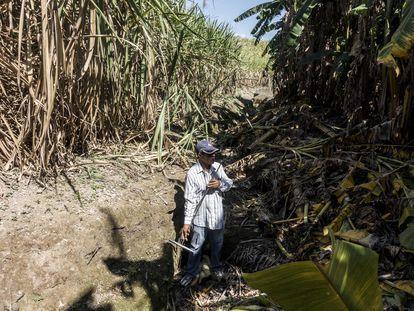 El activista Santiago Pérez, en una búsqueda de fosas clandestinas en Nayarit.