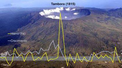 Esta gráfica sobre la imagen del Tambora muestra la explosiva presencia de hierro en los pinos pirenaicos tras la erupción de 1815.