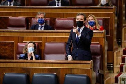 El presidente del PP, Pablo Casado, interviene durante una sesión de control al Gobierno en el Congreso de los Diputados.