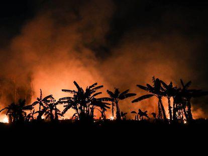Un incendio en la selva cercana a Porto Velho, en el noroeste de Brasil, en septiembre pasado.