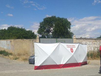 La Policía Foral de Navarra, en el lugar del crimen, en Murchante.