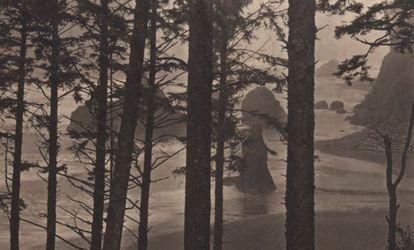 Una de las imágenes de Takeshi Shikama que se puede ver en Barcelona hasta el 7 de marzo.