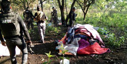 Los campamentos estaban camuflados en el bosque para que no los vieran desde el aire. La Fiscalía de Jalisco identificó puntos de calor en la sierra de Ahuisculco y fue así como logró localizarlos.