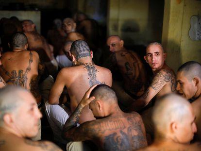 Varios pandilleros hacinados en una celda en la cárcel de Izalco, en El Salvador.