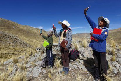 Algunos estudiantes buscan señal en la cima de una colina en el distrito de Mañazo, Perú, para asistir a sus clases virtuales.
