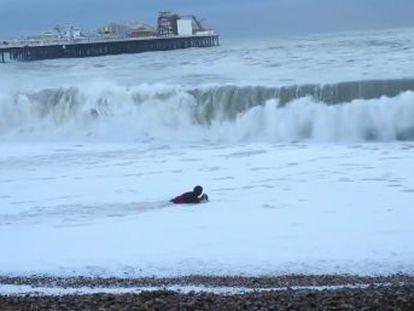 La dueña del animal se metió en el agua pese al fuerte oleaje que azotaba la costa de Brighton
