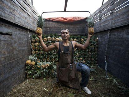 Daniel se dedica a la cosecha de piñas en el estado de Oaxaca, al sureste del país. Posa con dos de ellas en la Central de abastos del DF.