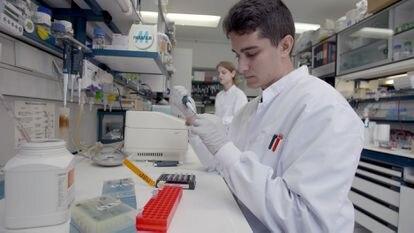 Investigadores del Centro Nacional de Biotecnología (CNB-CSIC)