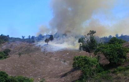 Un incendio provocado en una selva cerca de Tuxpan, Veracruz.