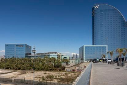 Parcela de tierra, junto al Hotel W y las oficinas de Desigual donde está previsto construir el Hermitage de Barcelona, en el puerto de la ciudad.