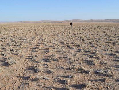 Zonas como el Mar de Arena de Namibia, en la imagen, serán aún más áridas.