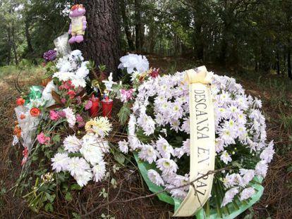 Flores, en lugar donde apareció el cadáver de Asunta
