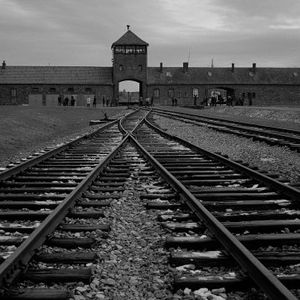 Las vías del tren conducen al campo de Birkenau o Auschwitz II, en Oswiecim (Polonia), situado a unos tres kilómetros de Auschwitz I. Con una extensión de 500 hectáreas, estaba dividido en varias secciones, estaba cercado por alambradas de espino y cercas electrificadas, que fueron utilizadas por algunos prisioneros para suicidarse. El objetivo principal de este campo de concentración (frente a Auschwitz I o III) fue el exterminio. En cada una de sus cuatro cámaras de gas, y respectivos crematorios, cabían 2.500 personas por turno.