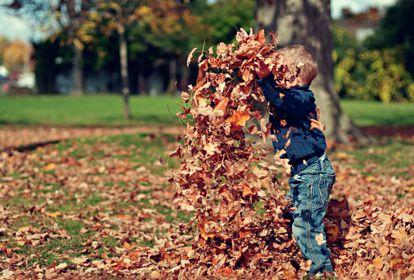 Un niño juega con las hojas en otoño.