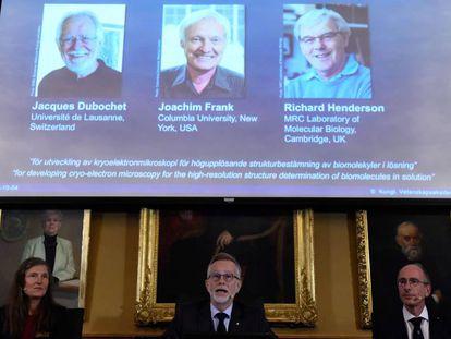 Anuncio de los ganadores del Nobel de Química esta mañana, en Estocolmo (Suecia).