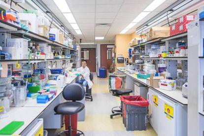 Laboratorio en el Centro MD Anderson de la Universidad de Texas.