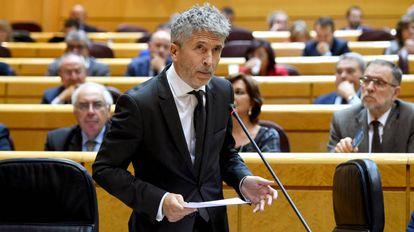 Grande-Marlaska, el pasado 23 de octubre en el Senado.