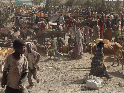La escasez es un grave problema para los etíopes.