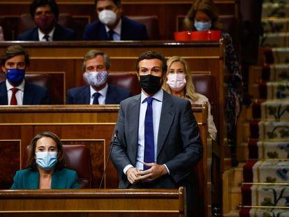 El líder del PP, Pablo Casado, este miércoles en el Congreso de los Diputados en Madrid.