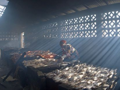 Fotograma de la película 'Stolen Fish' de la directora polaca Gosia Juszczak.