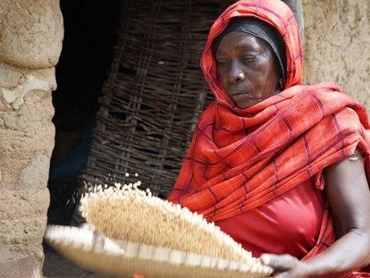 Hawa es una de las mujeres de la aldea de Yikké, en Chad. Foto y vídeo por María Gallar y Mamadou Diop / WFP
