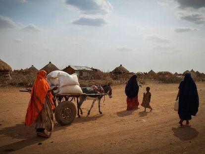 Distribución de ayuda alimentaria en Gode (Etiopía).