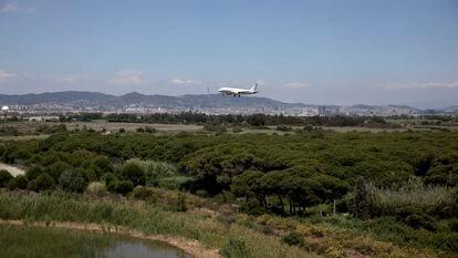 Terrenos del delta del rio Llobregat, al lado del aeropuerto.