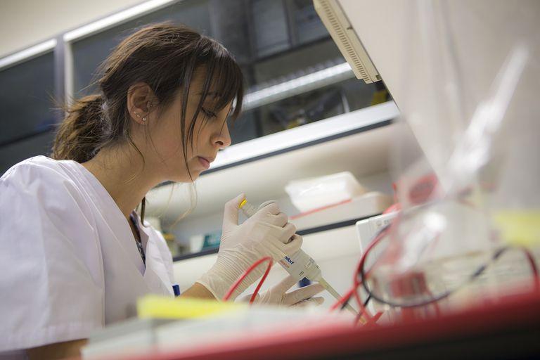 Una investigadora, en un laboratorio de la Universidad Pública de Navarra (UPNA). / Adolfo Lacunza (UPNA).