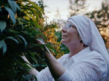 El documental 'Rompiendo hábitos' muestra la reinvención de una exejecutiva que fundó una empresa de venta de marihuana medicinal en California
