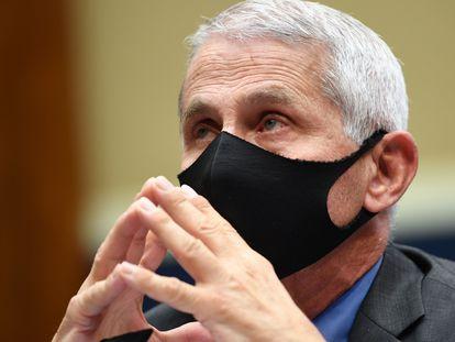 El epidemiólogo de la Casa Blanca Anthony Fauci, en el Congreso.