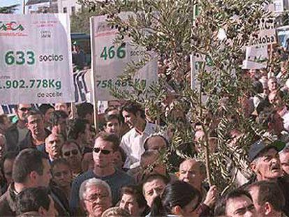 Aspecto de la concentración, ayer, de los olivareros ante el Ministerio de Agricultura en Madrid.