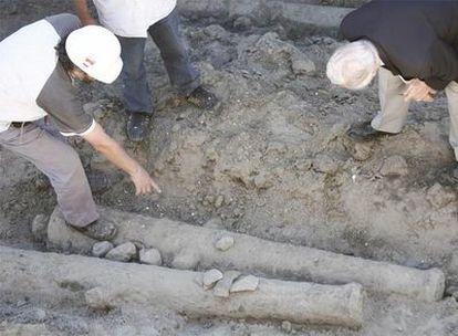 Un grupo de arqueólogos observa los cañones de la embarcación descubierta en Buenos Aires.