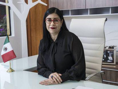 La senadora Vanessa Rubio del Partido Revolucionario Institucional (PRI).