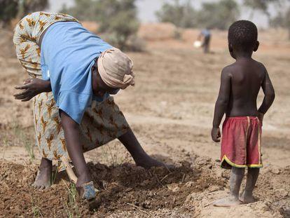 Una mujer cuida sus cultivos ante la mirada de su hijo, en Danja (Níger).
