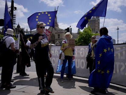 Partidarios de la permanencia en la UE se manifestaban este jueves, quinto aniversario del referéndum del Brexit, ante el Parlamento británico.