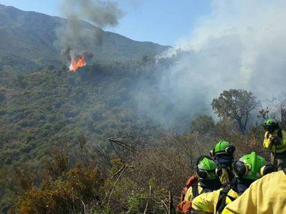 Imagen del incendio en Estepona (Málaga).