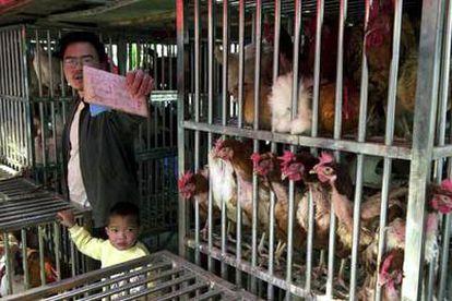 Un vendedor de pollos en un mercado de Pekín intenta evitar que su puesto sea fotografiado.