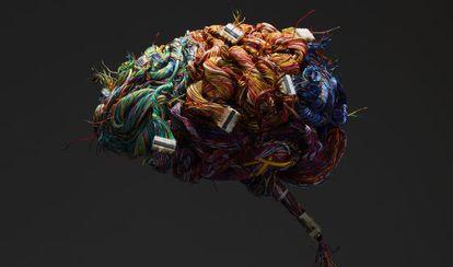 Cerebro de alambre.