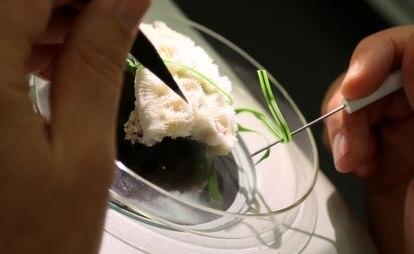 Un investigador trabaja con un ejemplar de coral.